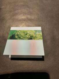 Rouwkaartje groen blanco (klein)