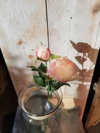 Pioenroos zacht roze