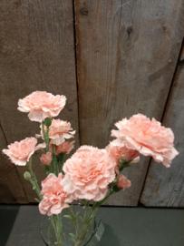 Anjers roze