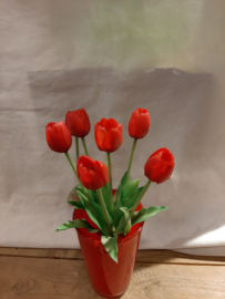 Tulpen bos rood