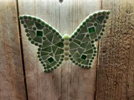 Vlinder groen groot