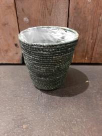 Zeegras groen middel ○18 cm