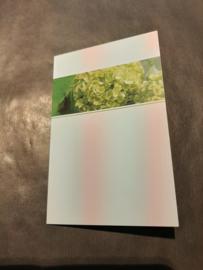 Rouwkaart blanco groen  middel