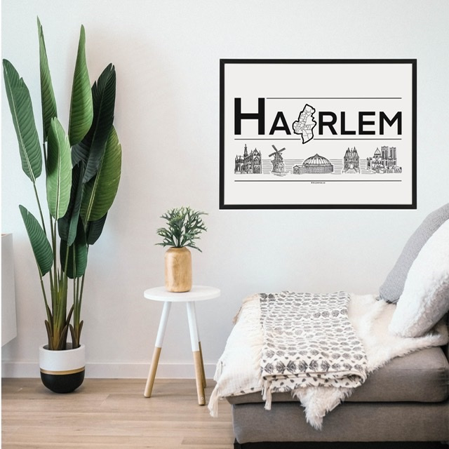 Poster Haarlem met lijst