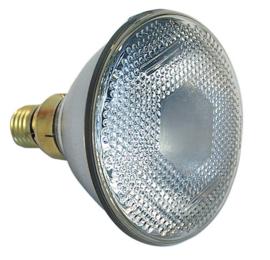 Par 38 - 46 bulbs