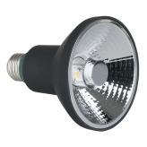 Artecta Lightbulbs