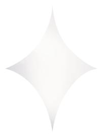 Showtec Stretch Shape Diamond 250 x 125 cm wit