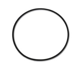 Guidi O-ring  Ø 110,72 x 3,53mm wierfilter