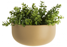 Wall Plant Pot Oval Wide | Sand Brown