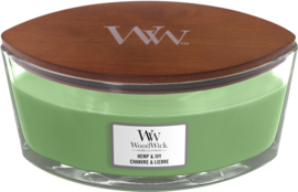 Hemp ivy ellipse woodwick