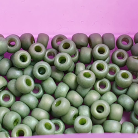 Miyuki rocailles maat 6 opaque glazed frosted pistachio