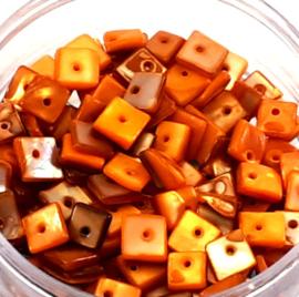 Puka schelpen oranje
