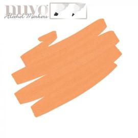 Nuvo single - Spiced Orange