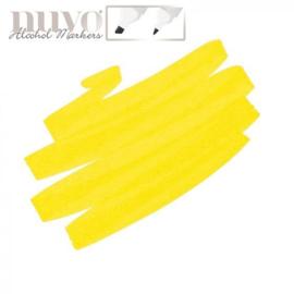 Nuvo single - Bright Sunflower