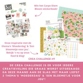 CREA CHALLENGE #9