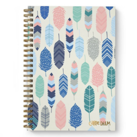 Feathers B5 Hardcover Notebook