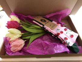 Pakket voorjaar tulpen