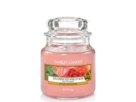 Sun-Drenched Apricot Rose small jar