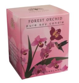 Forest Orchid geurkaars 170 gr