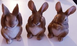 Leonardo setje konijntjes Horen - Zien - Zwijgen