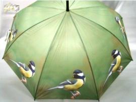 Paraplu koolmees