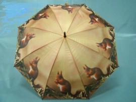 Paraplu eenkhoorn