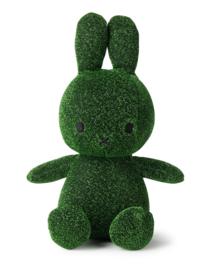 Nijntje Groen