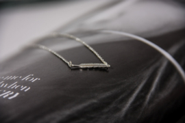 Feather necklace - goud