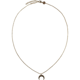 Crescent moon ketting - goud