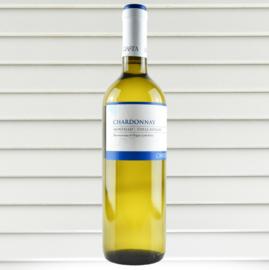 Chardonnay - Costa Vini