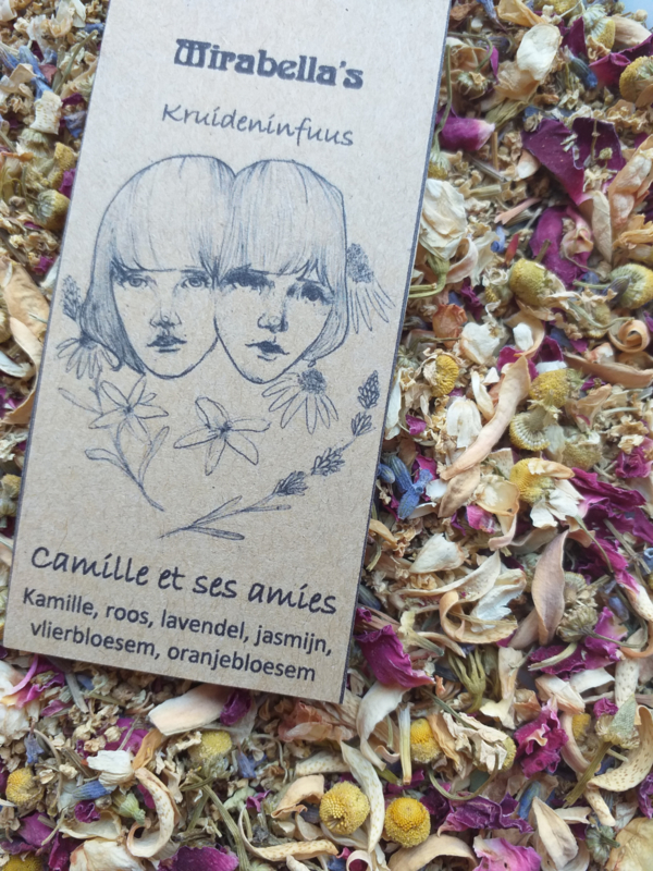 Camille et ses Amies