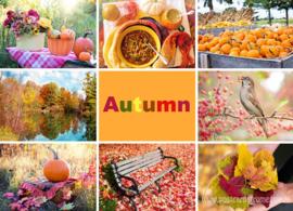 Herfst ansichtkaart