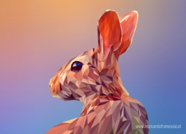 Polygon Rabbit