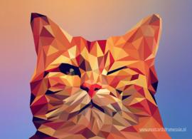 Polygoon ansichtkaart - Kat