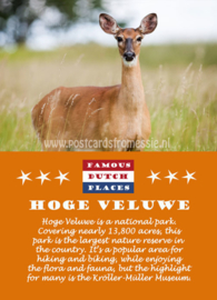Famous Dutch Places - Hoge Veluwe