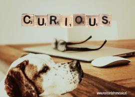 Ansichtkaart Curious