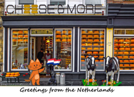 Greetings from the Netherlands - Cheese Shop