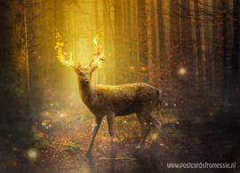 Hert in vuur en vlam