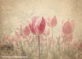 Sepia tulpen ansichtkaart