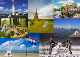 Postcard set Max in Holland