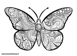 Kleuransichtkaart Vlinder