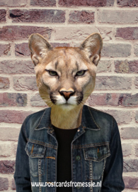 Cougar with denim jacket
