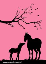 Silhouet paarden