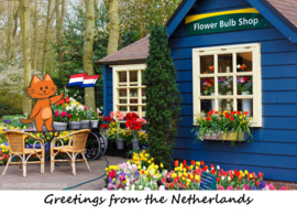 Greetings from the Netherlands - Flower Bulb Shop