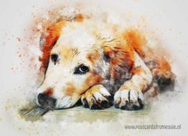 Aquarel ansichtkaart - Hond