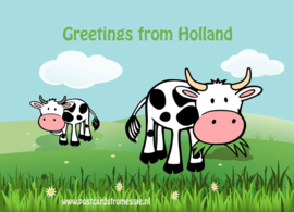 Greetings from Holland - koe