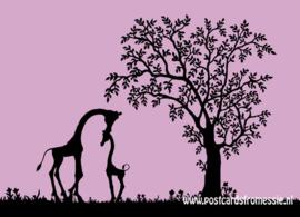Silhouet giraffen