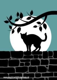 Silhouet kat