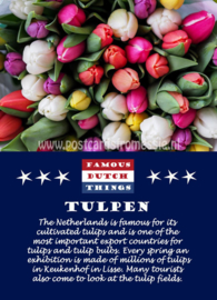 Famous Dutch Things - Tulpen