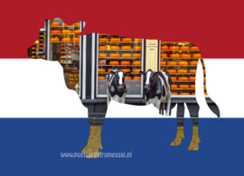 The Netherlands - country of cows